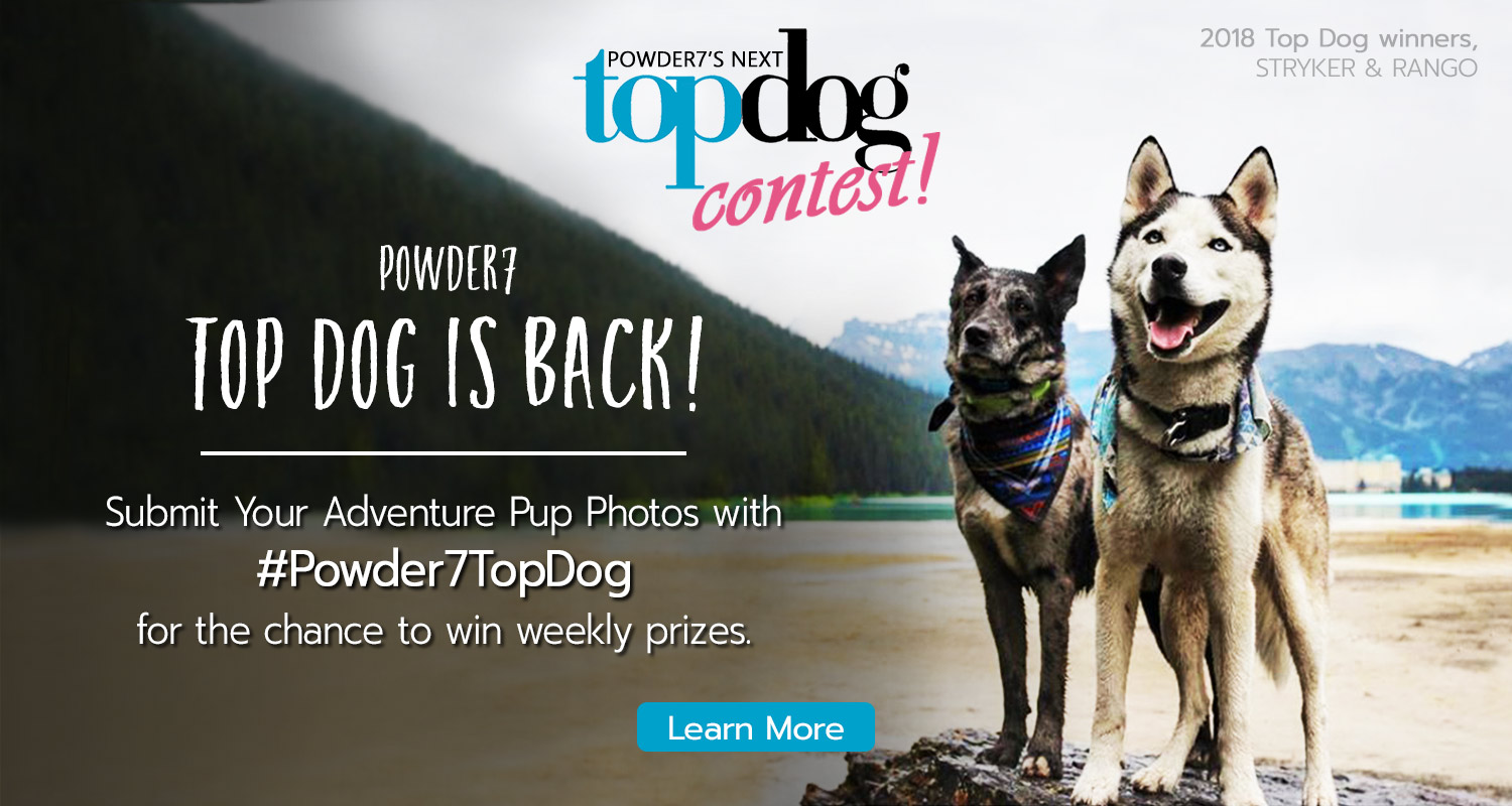 Powder7's Next Top Dog Contest is back!