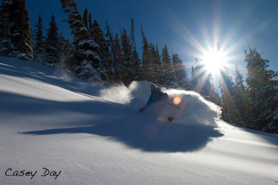 Powder skiing by Casey Day
