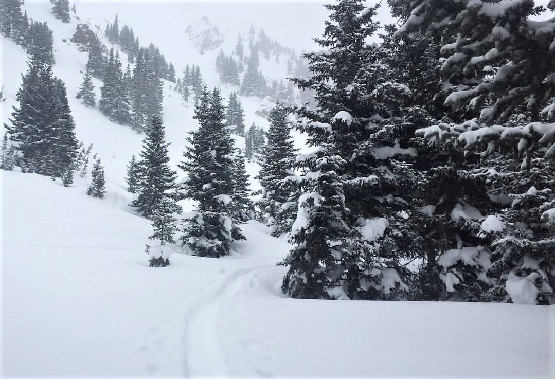 7% on the 7th for Conservation Colorado