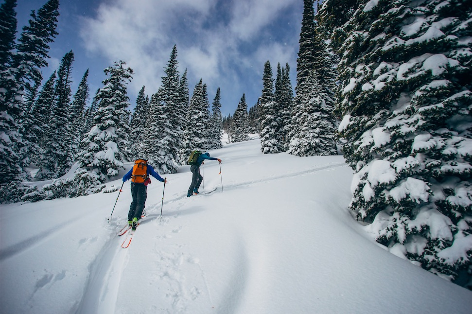 how to start backcountry skiing
