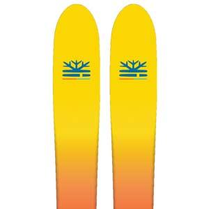 Dps ski sale